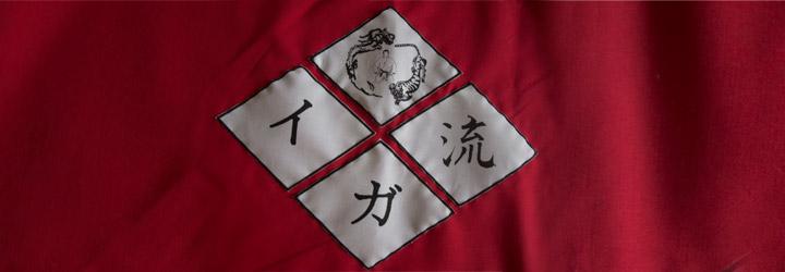 drapeau Ju Tai Jutsu